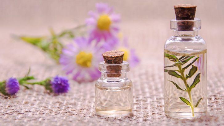 Jak bojovat s pylovou alergií bez pomoci léků? Vyzkoušejte bylinky i houby